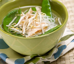 Ginger chicken noodle soup