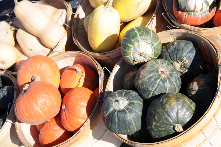 Different squashes displayed at a Farmer's Market.