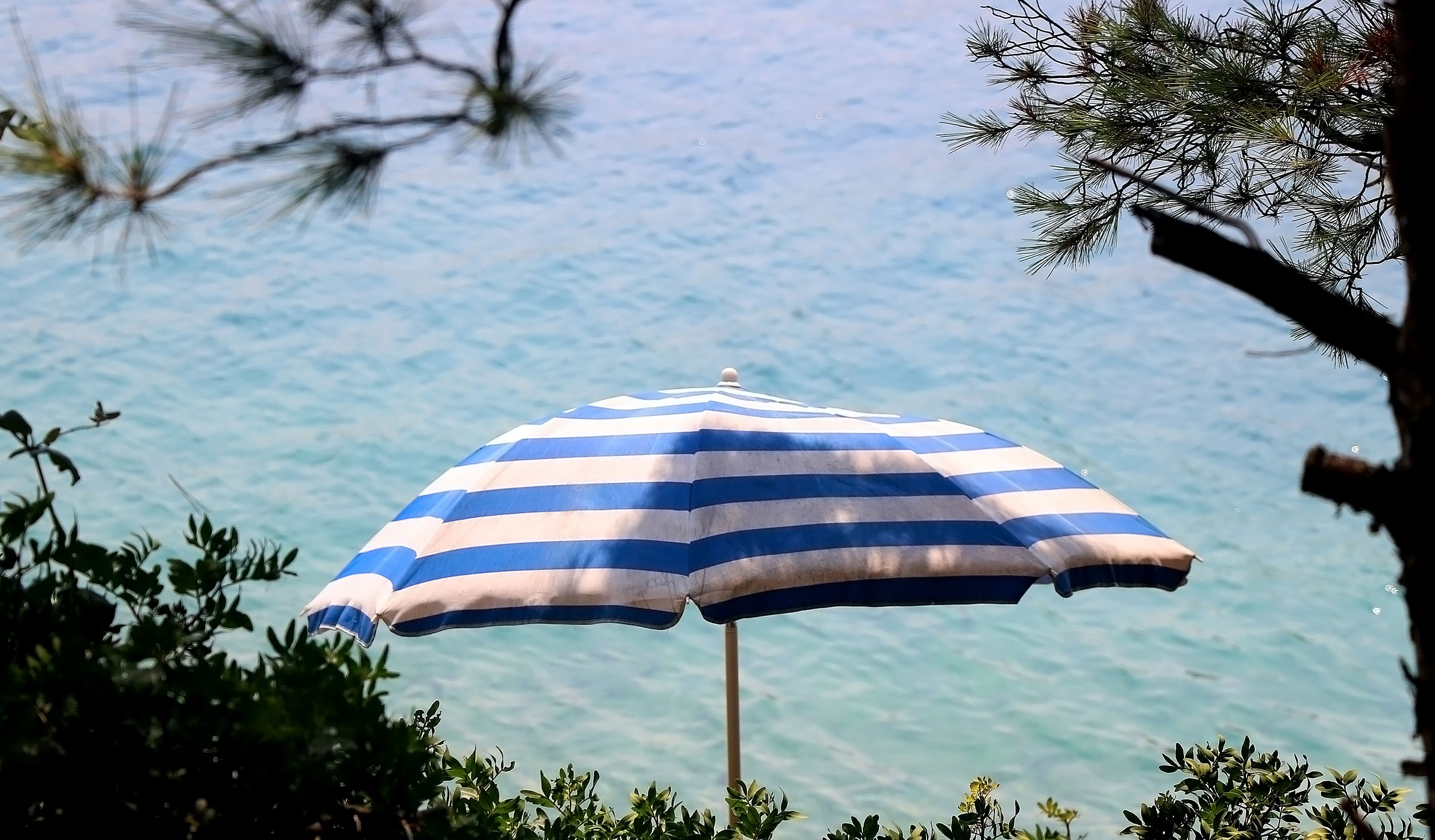 Striped umbrella at beach.